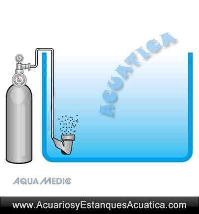 aquamedic-co2-box-kit-acuario-plantado-dulce-instalacion