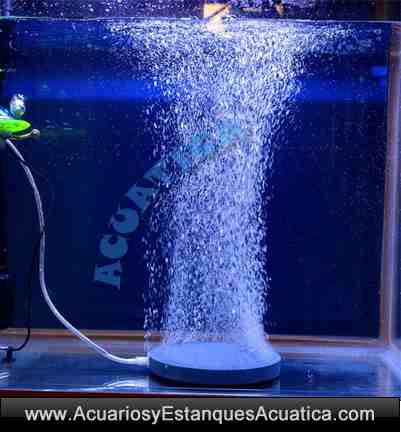 difusor-piedra-disco-circular-aire-oxigenacion-aireacion-estanque-acuario-burbujas-finas