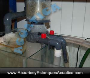 separador-de-urea-con-bomba-dg-2524-boyu-acuario-marino-skimmer-acuarios-salada-externo-2.jpg