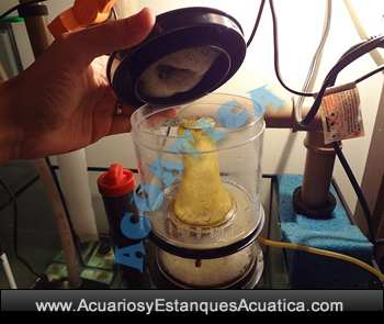 skimmer-separador-de-urea-espumador-boyu-dt1524-dt-1524-bomba-acuario-marino-salada-3.jpg