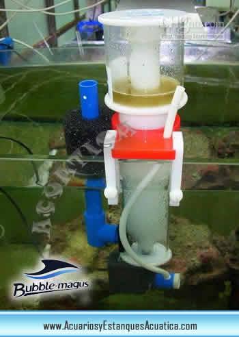 skimmer-bubble-magus-bm-barato-para-acuarios-marinos-nano-reef-espumador-colocacion.jpg