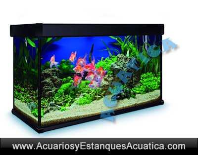 AQUALUX-PRO-D/aqualux-pro-100-negro-acuarios-tropical-listo-usar-filtro-luz-leds-oferta.jpg