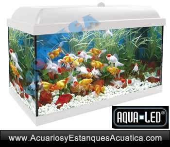 acuario-Aqualed-aqua-led-ica-icasa-Blanco-negro-100-130-240-acuarios-kit-led-mueble-blanco.jpg