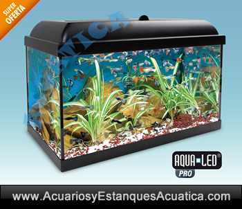 Acuario Aqualed Pro Kit 130l Acuarios Y Estanques