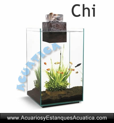 nano-acuario-fluval-chi-moderno-feng-shui-hogar-energia-agua-oferta