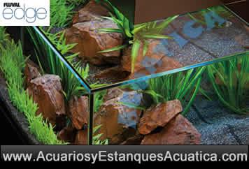 hagen-acuario-fluval-edge-46-23-litros-negro-blanco-agua-dulce-vistas.jpg