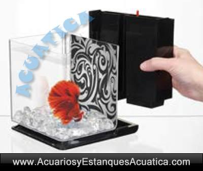 hagen-fluval-kits-betta-2-litros-marina-instalacion-filtro-bettera-1