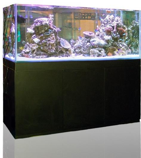 acuario-agua-salada-acuario-marino-blau-set-gran-cubic-aquarium-set-con-mesa-mueble.JPG