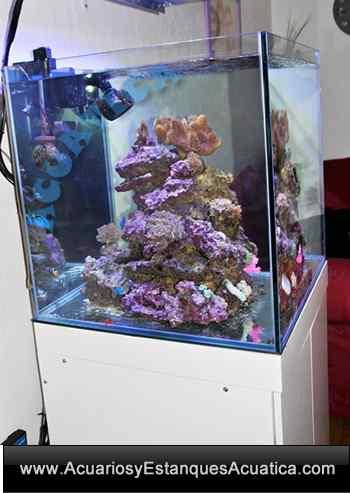 gran-cubic-marine-blau-acuario-marino-con-mueble-vortex-rebosadero-sump-agua-salada-coral-roca-238-1.jpg