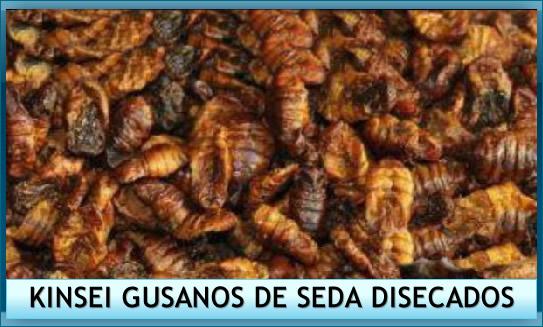gusanos-de-seda-disecados-kois-koi-alimentacion-a-granel-estanque-kinsei.jpg