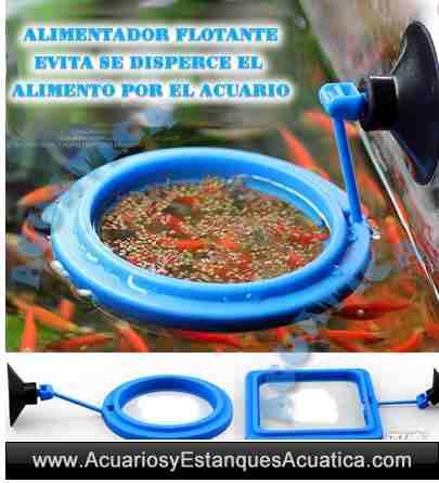 contenedor-alimentador-alimentacion-alimento-peces-pez-acuario-estanque-redondo-circular-cuadrado-8.jpg
