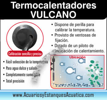 venta-de-termocalentador-barato-economico-para-acuario-de-agua-dulce-acuario-de-agua-salada-vulcan-ica-icasa.jpg