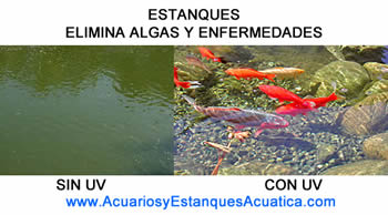 clarificador-uv-elimina-virus-germenes-agua-ultravioleta-germicida-agua-verde-algas-esterilizador-estanque-acuario.jpg