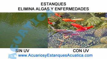 clarificador-agua-uv-c-aquaking-11w-ultravioleta-germicida-agua-verde-algas-esterilizador-estanque-kois-acuario-1.JPG