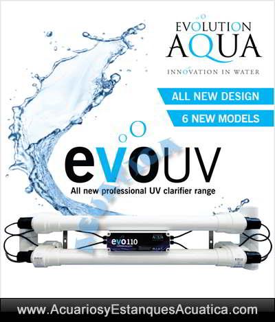 clarificador-agua-verde-uv-c-evo-germicida-esterilizador-elimina-algas-estanque-suspension-banner-2.jpg