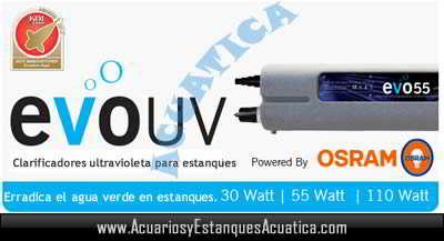 clarificador-agua-verde-uv-c-evo-germicida-esterilizador-elimina-algas-estanque-suspension-banner.jpg