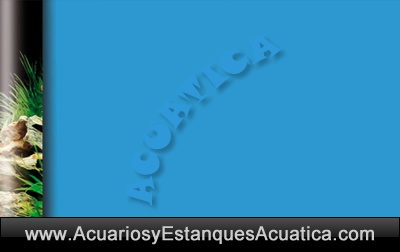 fondo-acuario-dcoracion-lamina-decorativa-foto-imagen-azul-celeste-laguna-acuario-plantado-doble-cara-1