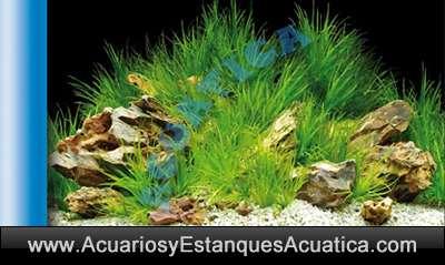 fondo-acuario-dcoracion-lamina-decorativa-foto-imagen-azul-celeste-laguna-acuario-plantado-doble-cara-2