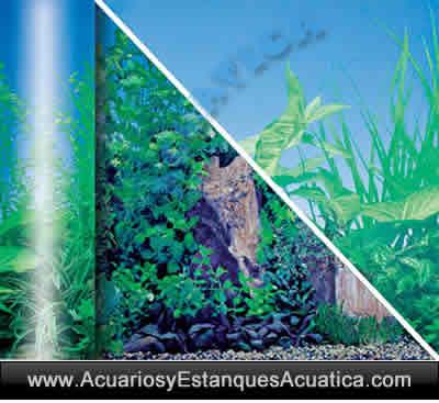 fondo-lamina-decorativo-decoracion-acuario-foto-CHARCA-ESTANQUE-acuarios-urnas.jpg