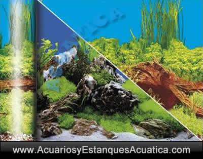 fondo-lamina-decorativo-decoracion-acuario-foto-montes-raices-acuarios-urnas.jpg