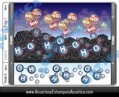 filtro-hydra-stream-acuario-estanque-dulce-marino-filtracion-nitrito-amoniaco-ciclo-interno.jpg