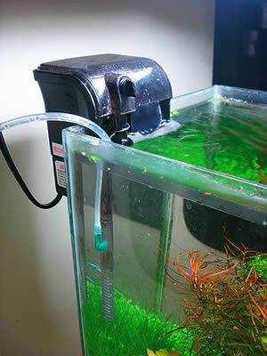 Filtro mochila jebo 508 980l h cascada acuarios acuarios for Filtro para pecera
