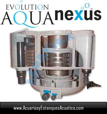 filtro-nexus-310-evolution-aqua-estanque-estanques-filtracion-koi-kois-interno.jpg