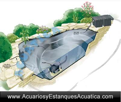 Sunsun cbf 350b filtro de gravedad caja estanques for Filtro estanque koi
