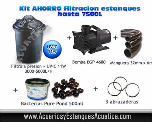 Oferta kit filtracion presion estanques 7 500l for Kit estanque jardin