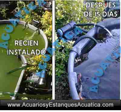 filtro-jebo-955-kit-filtracion-estanque-estanques-presion-bomba-de-agua-uv-c-ultravioleta-presurizado-kois-5.jpg