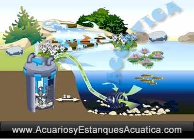 oase-biopress-set-4000-6000-10000-kit-set-filtracion-estanque-filtro-bomba-uv-instalacion-croquis