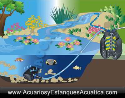 sunsun-cpf-50000-filtro-estanque-a-presion-kaldnes-biologico-mecanico-koi-carpas-charca-filtracion-uv-55w-instalacion