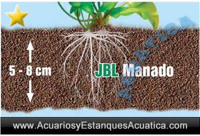 jbl-manado-grava-sustrato-acuario-plantado-arena-tierra-plantas-calculo-cama-grosor.jpg