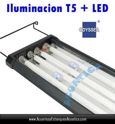 pantalla-iluminacion-acuario-odyssea-t5-quad-moonled-marino-dulce-detalle.jpg