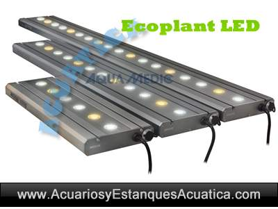 Aqua-Medic-eco-plant-LED-iluminacion-pantalla-leds-acuario-plantado-planta-dulce-2.jpg