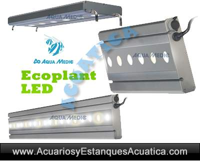 Aqua-Medic-eco-plant-LED-iluminacion-pantalla-leds-acuario-plantado-planta-dulce-4.jpg