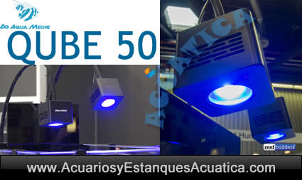 aquamedic-qube-50-foco-led-iluminacion-acuario-marino-reef-salada-corales-cerca-azul-4.jpg