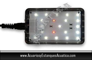 mini-nano-pantalla-para-acuarios-de-agua-dulce-led-blau-aquaristic-iluminacion-pecera-21-led.jpg