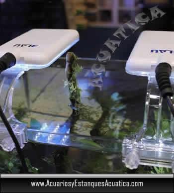 pantalla-acuario-agua-dulce-nano-led-blau-iluminacion-acuario-nano-mini-pecera-pantalla-blanca-doble-urna.jpg