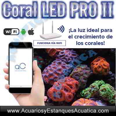 pantalla-led-acuario-marino-wifi-coral-led-pro-ii-controlador-programable