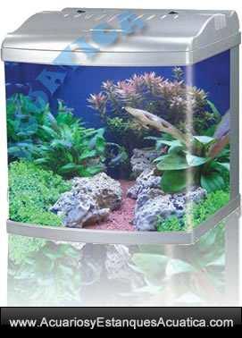 blau-cubic-50/nano-acuario-blau-50-cubic-compact-pecera-curvo-cristal-peces-discos-4.jpg