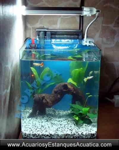 acuario-nano-blau-cubic-agua-dulce-salada-marino-gambario-kit-1.jpg
