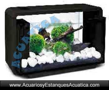 nano-acuario-agua-dulce-led-mini-acuarios-natur-biotop-deluxe-blanco-negro-hailea-leds-1.jpg