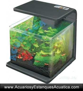 nano-acuario-agua-dulce-led-mini-acuarios-natur-biotop-deluxe-blanco-negro-hailea-leds-4.jpg