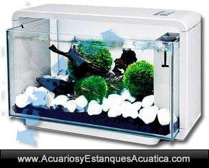 nano-acuario-agua-dulce-led-mini-acuarios-natur-biotop-deluxe-blanco-negro-hailea-leds-5.jpg