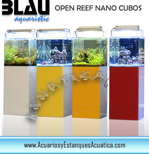 blau-open-reef-nano-cubos-compactos-sump-bomba-marea-acuario-marino.jpg