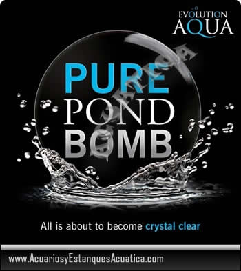 pure-pond-bomb-estanque-bacterias-favorables-agua-sana-estanques-koi-carpas-jardin-logo.jpg