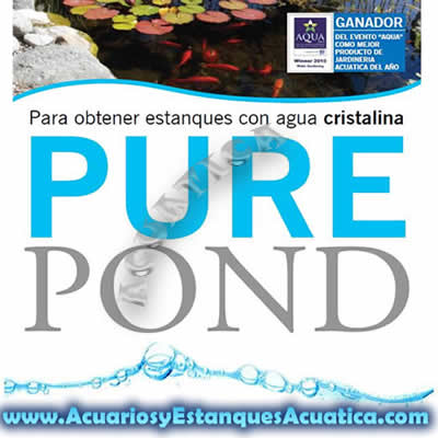 pure-pond-bacterias-estanque-favorables-agua-cristalina-saludable-estanques-koi-kois-filtracion-1.jpg