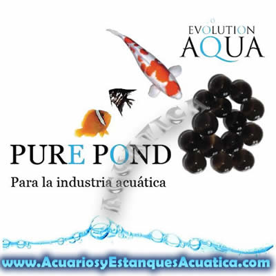 pure-pond-bacterias-estanque-favorables-agua-cristalina-saludable-estanques-koi-kois-filtracion-4.jpg