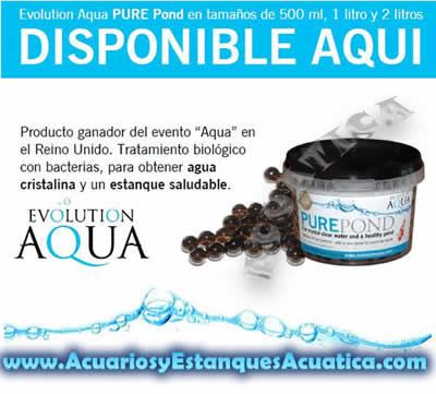 pure-pond-bacterias-estanque-favorables-agua-cristalina-saludable-estanques-koi-kois-filtracion-5.jpg